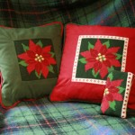 Poinsettia Cushion and Glasses Case